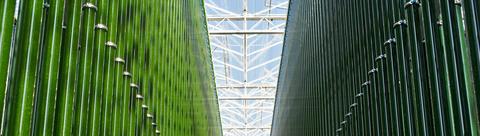 Green Tech - Photobioreactors